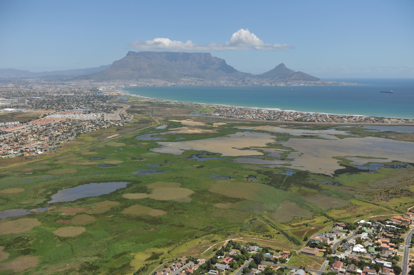 Table Bay Nature Reserve